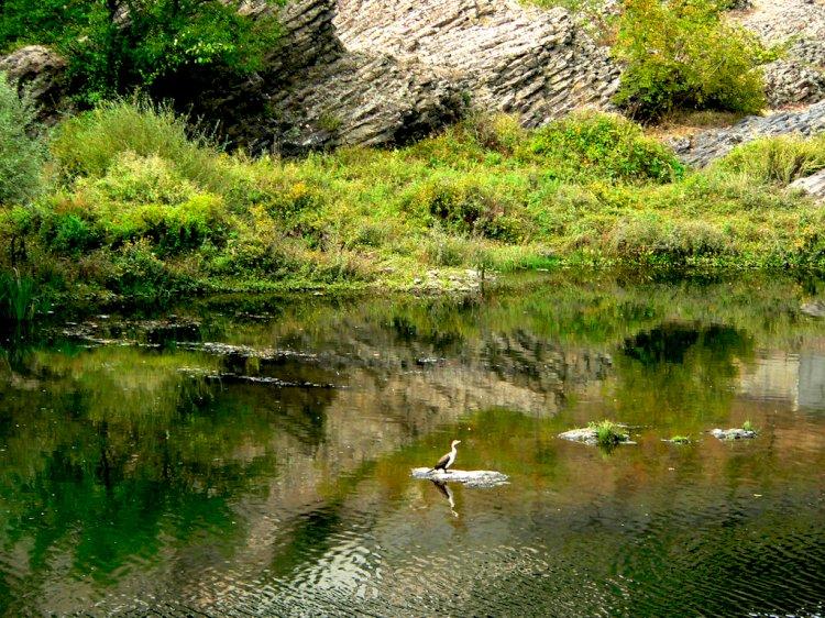 Двете лица на река Арда