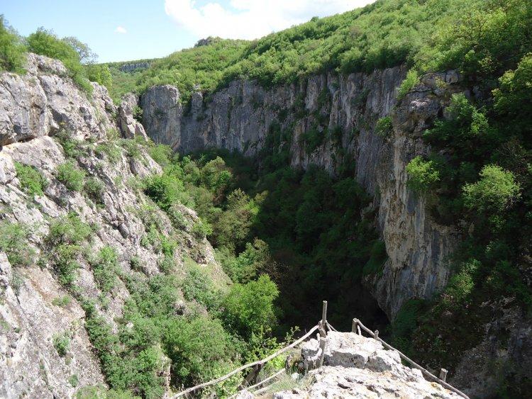 Каньонът на река Негованка