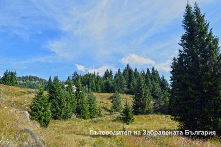 Да се потопиш в дивите Родопи (Ден Втори)