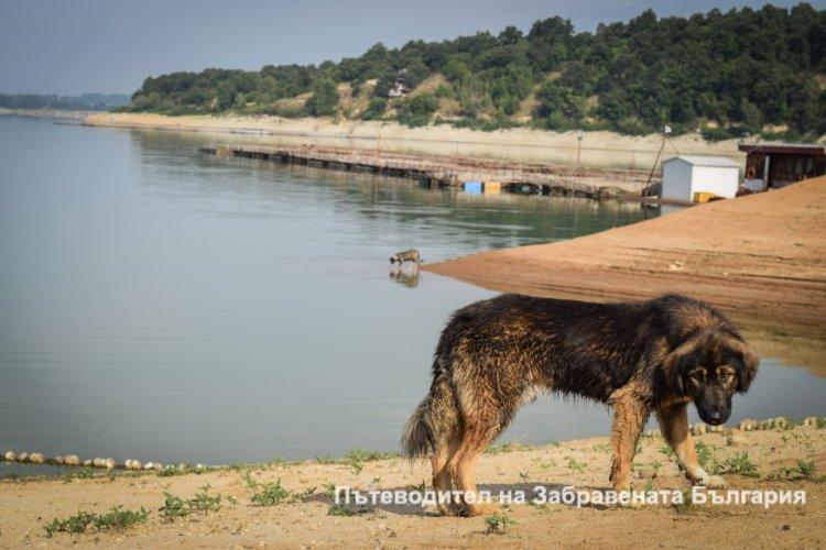 Експедиция Тунджа: Ден 4ти в който страдаме от жегата